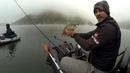 Última pesca de 2018   Vertical Zander