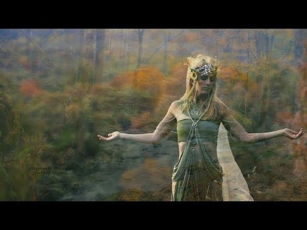 Field of Dreams - GIOVANNI MARRADI