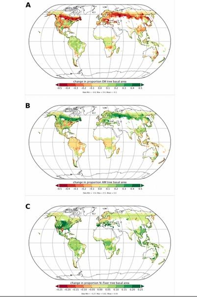КАРТА ВСЕХ ГРИБОВ НА ЗЕМЛЕ На нашей планете живет 7 миллиардов человек и 3 триллиона деревьев. Под каждым из деревьев растут грибы, и все они теперь внесены в составленную экологами базу