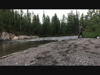 Ловля Хариуса на реке Пожемаю