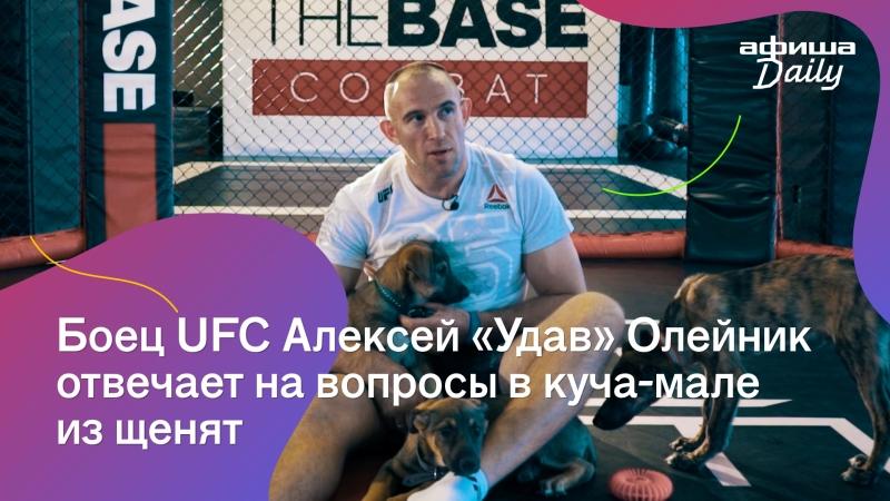 Боец UFC отвечает на вопросы «Афиши Daily» в куча-мале из щенят