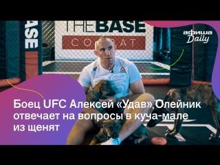 Боец UFC отвечает на вопросы Афиши Daily в куча-мале из щенят