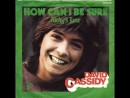 David Cassidy - How Can I Be Sure (1972)