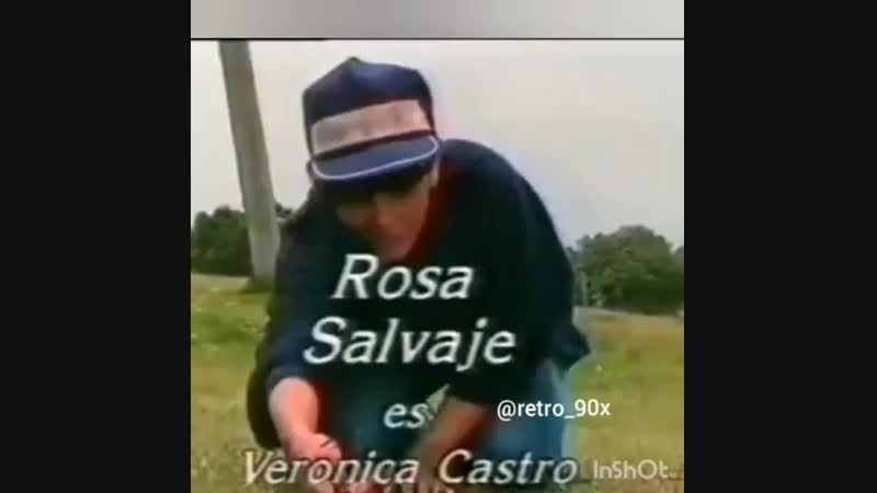 Дикая РозаВ.Кастро.
