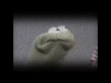 Kermit loss his shit