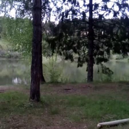 """Калабин Иван 3Run on Instagram """"Бежим к своей мечте, не сдаваясьD . . run побег лес природа забег спорт жизнь здоровье мечта цель бег ..."""