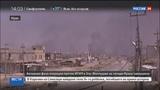 Новости на Россия 24  •  Фаллуджу полностью зачистили от ИГИЛ
