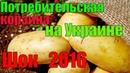 Шок : потребительская корзина на Украине