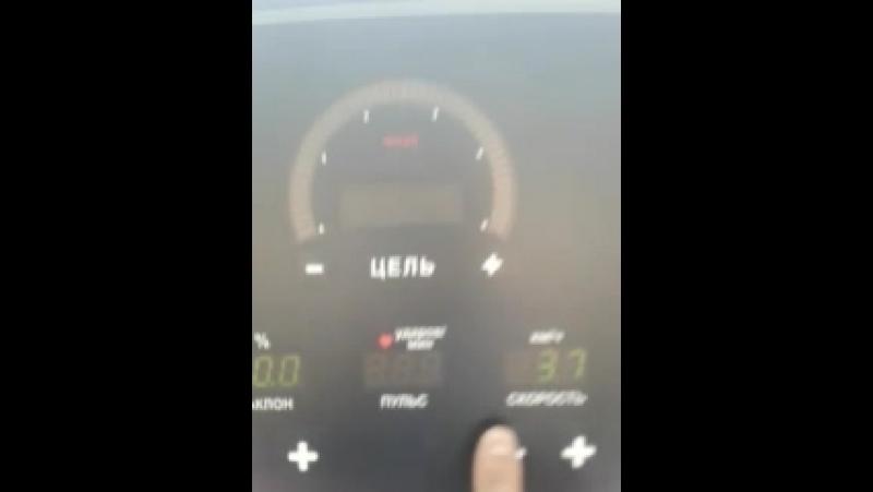 31 км за 2,5 часа