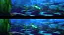 Шевели ластами 3D (2010)
