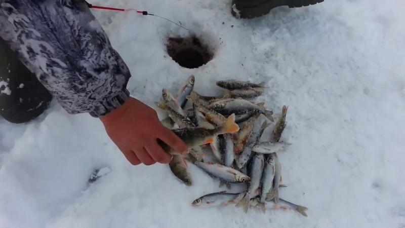 Рыбалка по первому льду 2018. Окунь, чебак, пескарь...