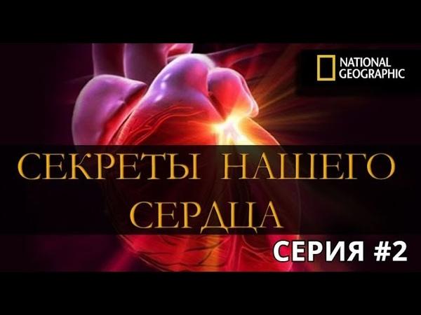 Секреты Нашего Сердца Искра жизни Документальный National Geographic