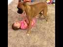Why babies need dogs 🐶 💕 💖 Subscribe for latest video.