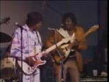Albert Collins _ Buddy Guy - Guitar Duel