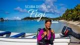 Scuba Diving in Fiji Mana Island 2018