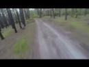Дикий медведь гонится за велосипедистом!