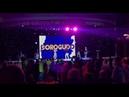 Dorogudo Live формат Ретро Кавер на песню Stumblin in Suzi Quatro Chris norman