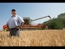 Выход российской пшеницы на алжирский рынок грозит Франции катастрофой