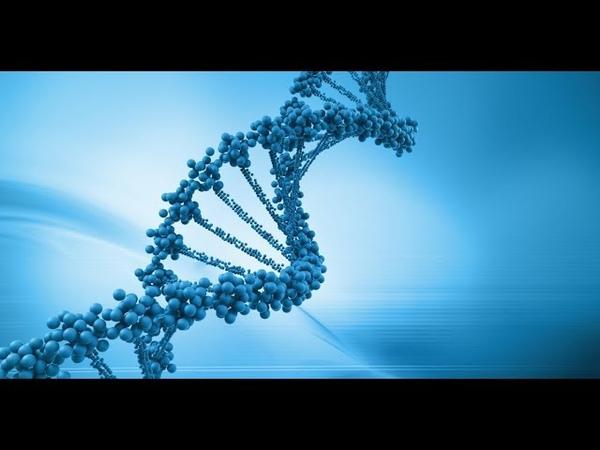 NG С точки зрения науки: Рождение Жизни / Naked Science: Birth Of Life