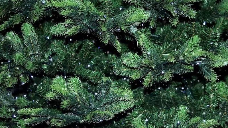 Новогодняя елка Гирлянды Праздничный фон Фон для открытки поздравления Футаж FOOTAGE