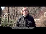 Какие птицы обитают в кампусе ПГНИУ? Отвечает Наталья Костицина
