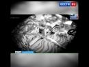 Жестокую няню из Стерлитамака приговорили к условному сроку