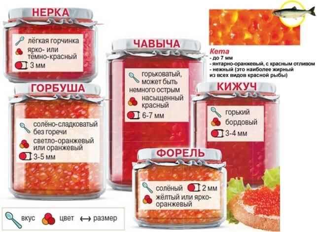 Красная икра: как выбрать, отличить настоящую красную икру от поделки, какая красная икра лучше