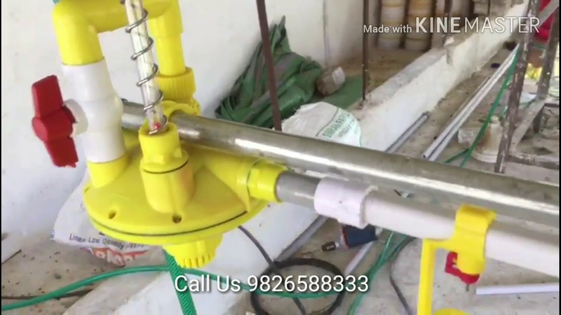 How to Install Nipple Drinker in Poultry Farm By Naganpuriya Group