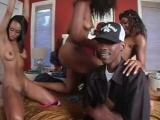 Kurupt_ft._Jelly_Roll___She_Likes_To_What__Uncensored 18+