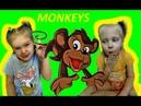 В гостях у Миланы и Полины Обезьянки акробатки tumblin monkeys Milana and Polina Monkey acrobats