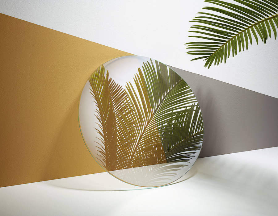 Reflections of Green Plants in Mirrors