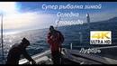 Рыбалка в черном море с лодки Ловля ставриды селедки и луфаря на самодур Часть 1 4К видео