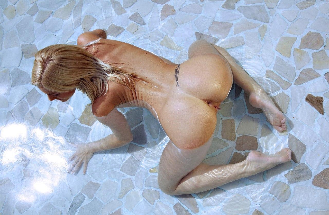 Arab sheik porn tue