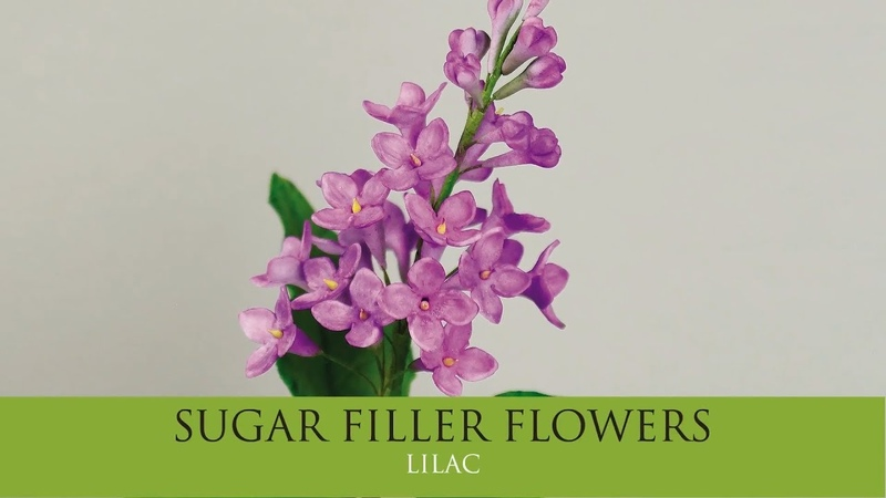 How to Make Pro Lilac Sugar Filler Flowers Part 6