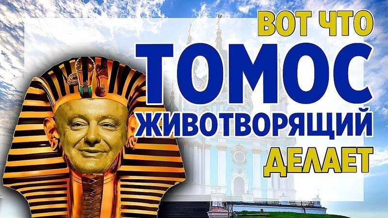 Предновогодняя движуха Украина готовит новые провокации Уставший Оптимист