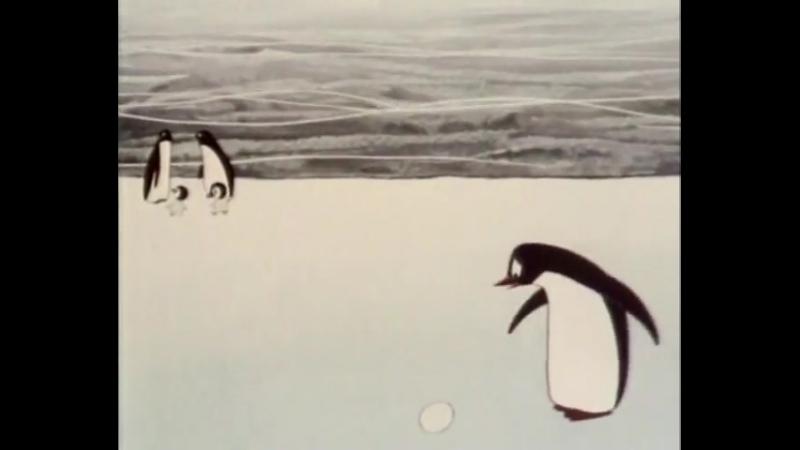 Пингвины (1968) Добрые советские мультфильмы
