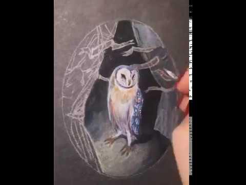 Harry Potter owl Hedwig, miniature Christmas present hand made art