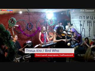 Новогодний квартирник Птицы Кто #наИльинской - это все, как мы любим /LIVE начало в 17:30/ #ОмскСтрим