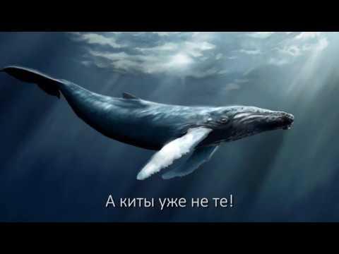 Let me hear - упоротые субтитры - Parasyte -the maxim-