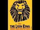 The Lion King de Musical - Op Hol Geslagen