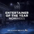 Country Music Association on Instagram The #CMAawards ENTERTAINER of the Year nominees are... @JasonAldean, @LukeBryan, @KennyChesney, @ChrisStap...
