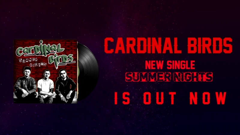 Cardinal BIrds - Summer Nights