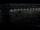 Бассейн 🏊🏻♂️ прыжок и плюх
