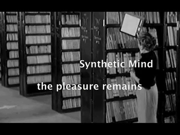 Synthetic Pleasure