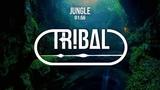 Inkyz - Jungle