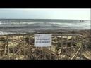 Пляжи Сен-Тропе в мазуте