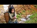 Alho da China produzido por crianças e escravos chega ao Brasil