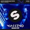 Alok Mario Bautista feat. Pauza X Necola - Toda La Noche (Makkeno Mash-up)