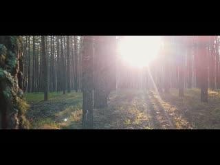 Фильм «#SaveBor» о защите уникального национального парка Бузулукский бор