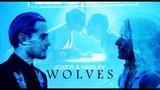 Harley Quinn &amp The Joker Wolves